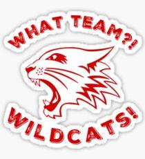 What team?! Sticker