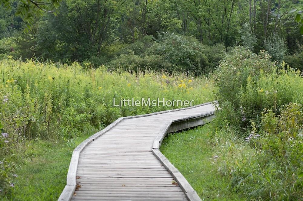 Hiking Path by LittleMsHorner
