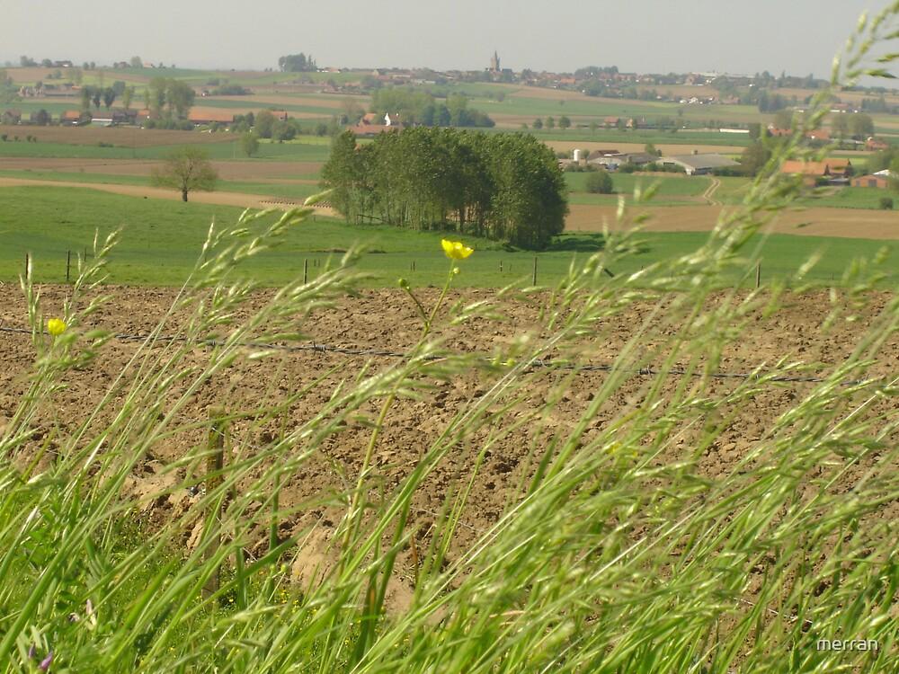 Green fields of France by merran
