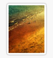 Seagulls at Sunset Sticker