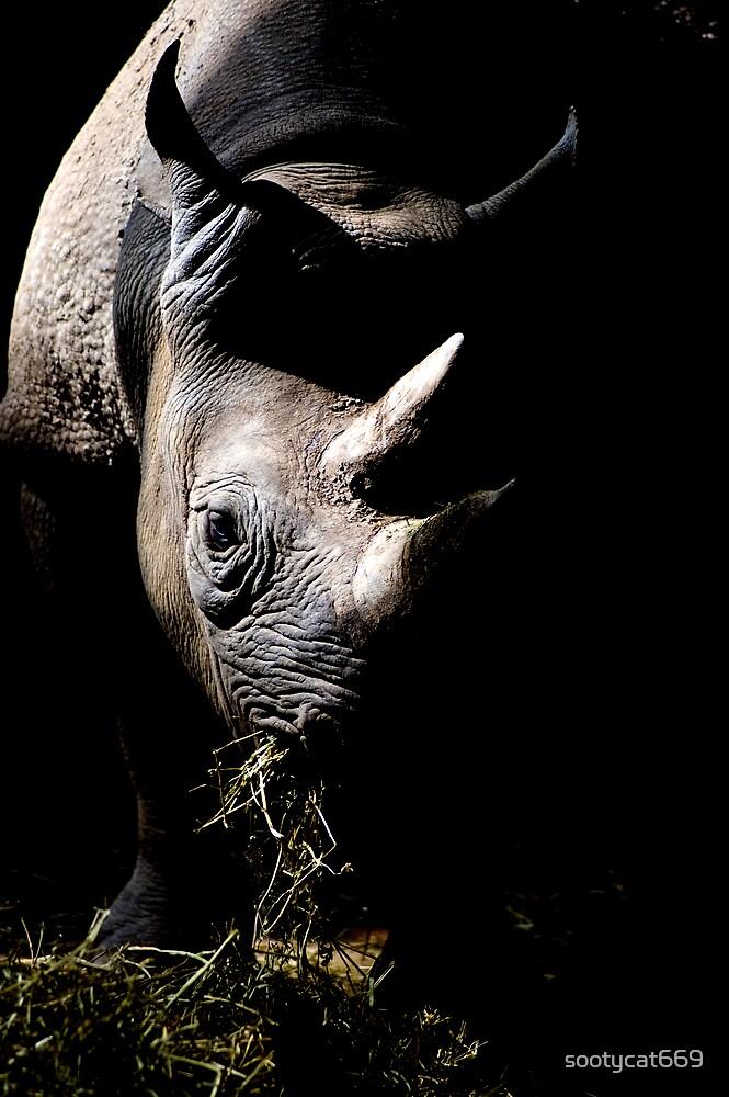Rhino by sootycat669