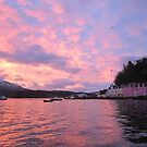 Pink Port by jmnicolson