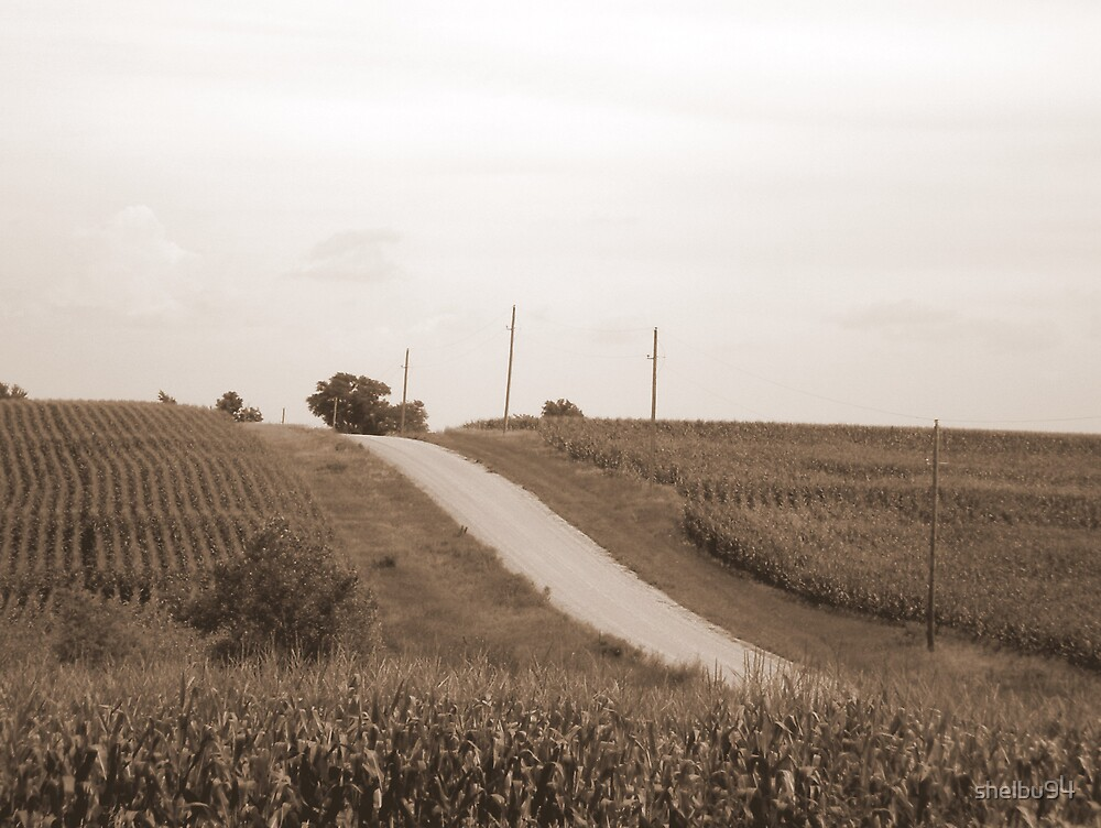 The Country Road by shelbu94