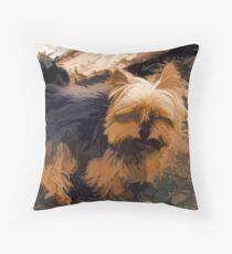 Little Yorkie  Artwork  - Yorkshire Terrier Dog Throw Pillow