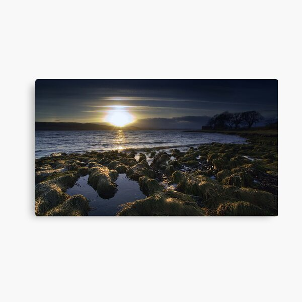 Redcastle IV Canvas Print