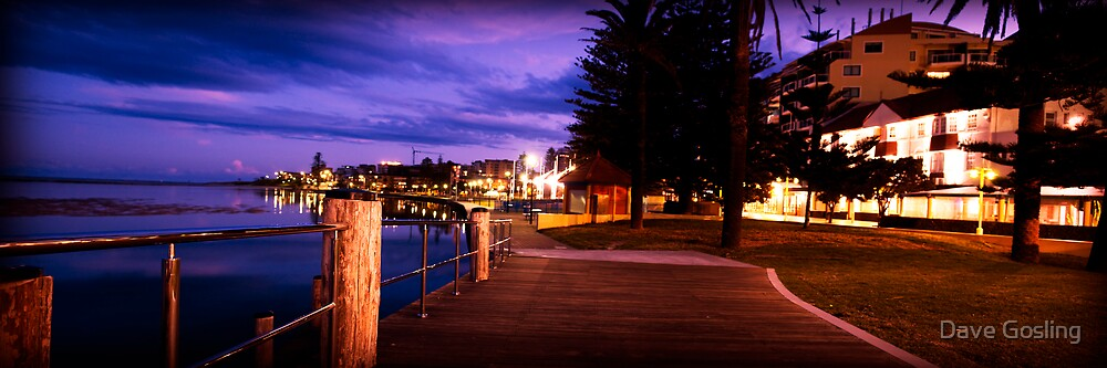The Foreshore by Dave  Gosling Photography