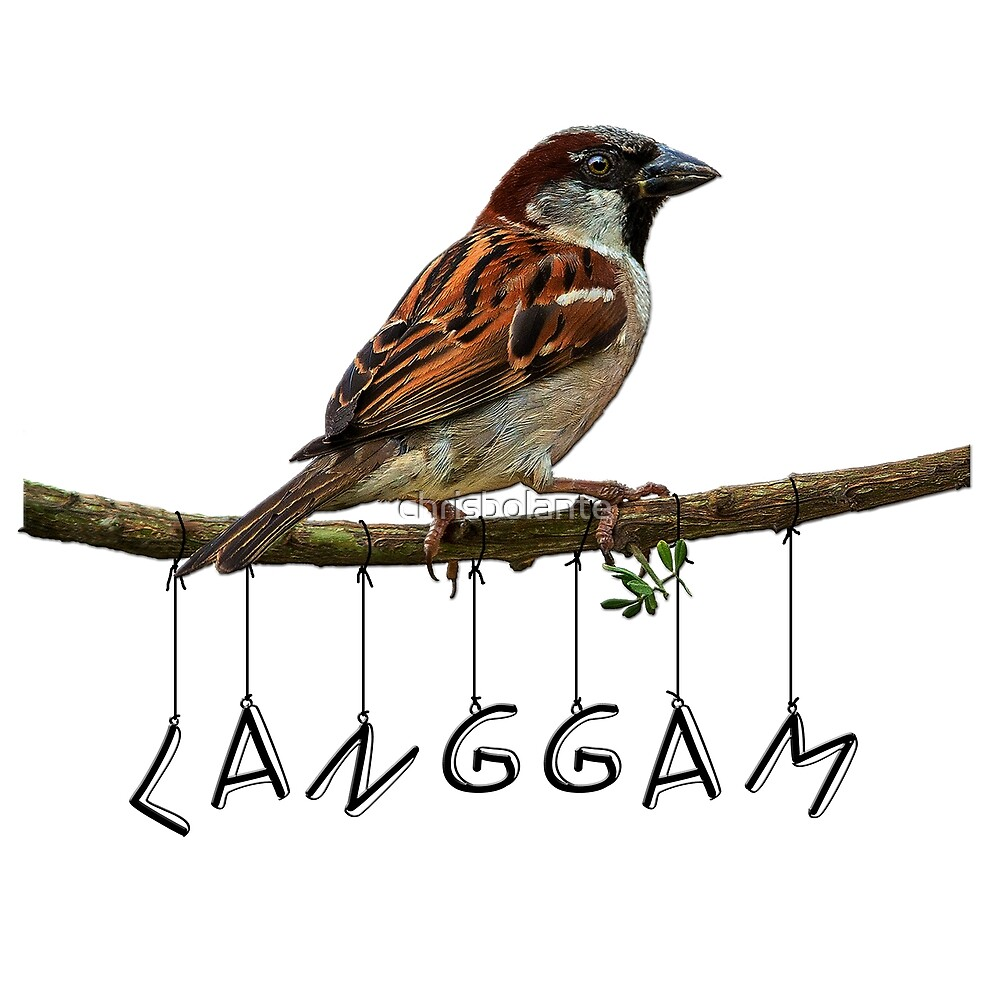 flying langgam by chrisbolante