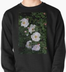 White Roses on a Bed of Black and Green  Pullover