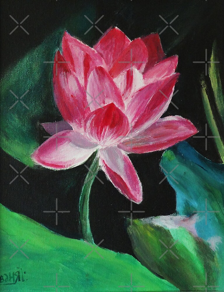 Pink Lotus Flower Painting by Manitarka