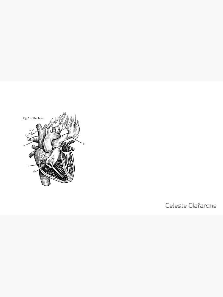 das Herz von celestecia