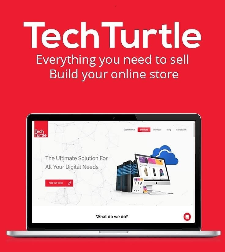 Build Your Professional Ecommerce Website by turtle452