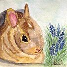 Baby Bunny by AngieDavies