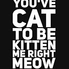 You've cat to be kitten me right meow by alexmichel91