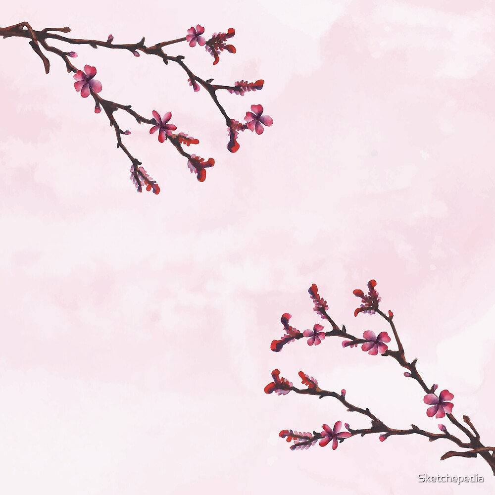 Cherry Blossom Watercolor Pink Art by Sketchepedia