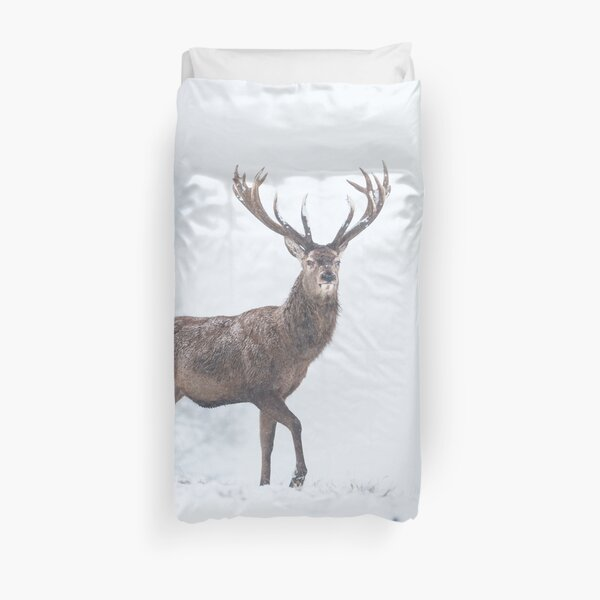 Red Deer stag in snow Duvet Cover