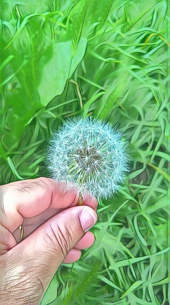 Flower by laertearagao