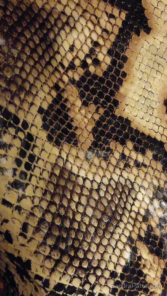Tanned Snakeskin by SandraPatterson