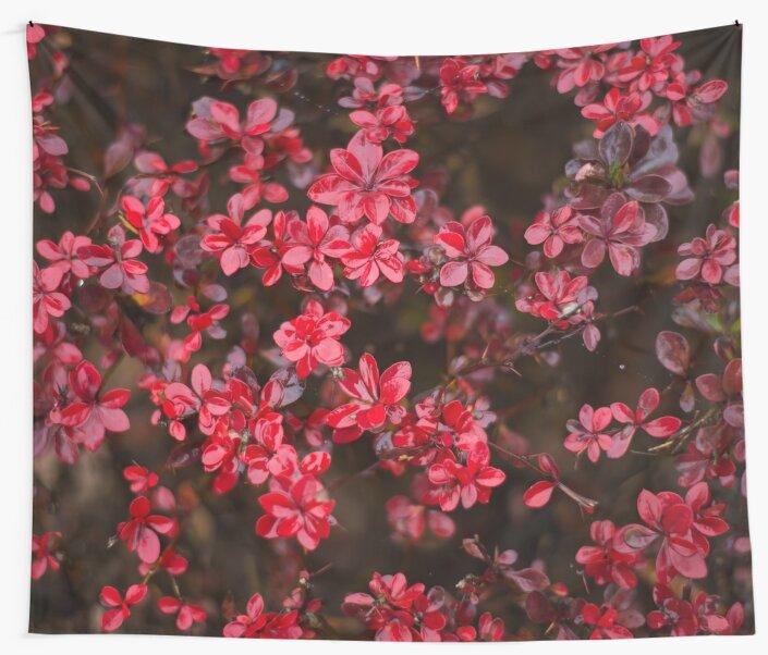Red flowers by lenaivanova