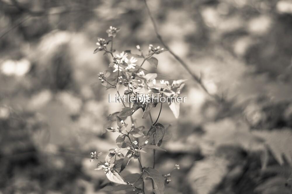 Rustic Flower by LittleMsHorner