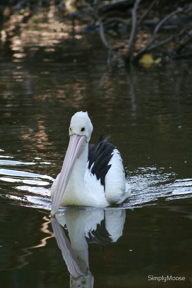 Pelican 1 by SimplyMoose