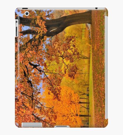 Fall at Larz Anderson iPad Case/Skin