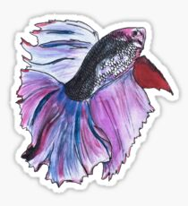 Beta fish painting Sticker