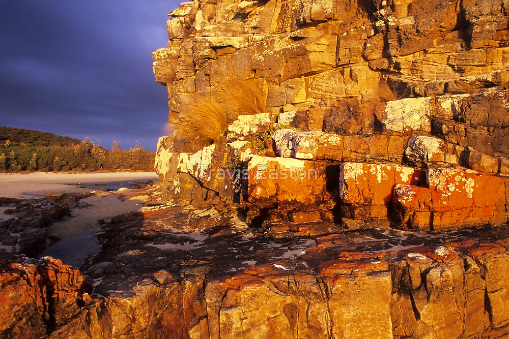 Nadgee Beach Rocks by Travis Easton