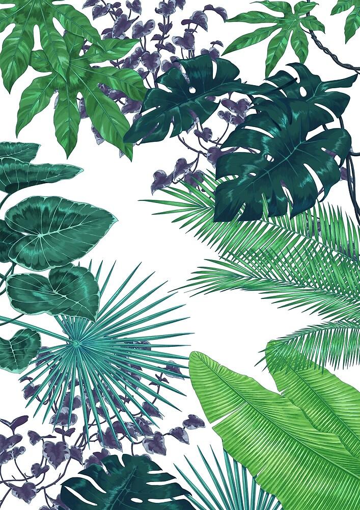 Tropische Pflanzen II by PatouBerlin