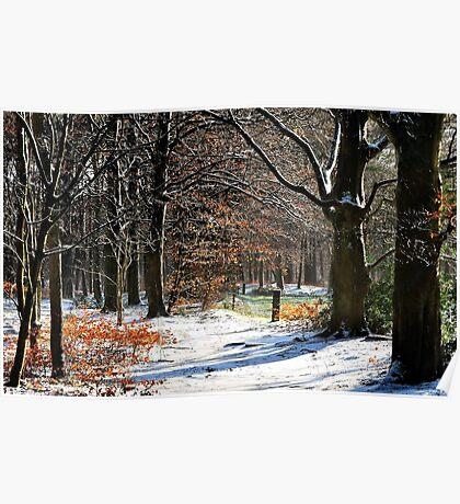 In winter wonderland Poster