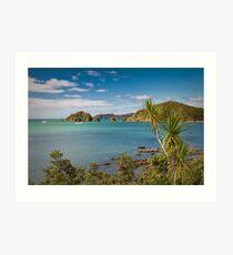 Bay of Islands, New Zealand Art Print