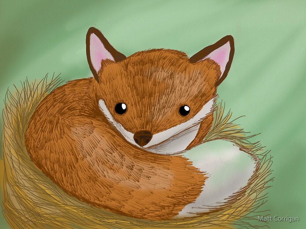 A Fox curled up in his bed of straw by Matt Corrigan