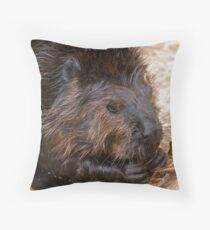 Leave it to the Beaver Throw Pillow
