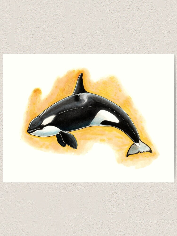 Alternate view of CorkyII - Draw Every Captive Orca Project nr. 1 Art Print