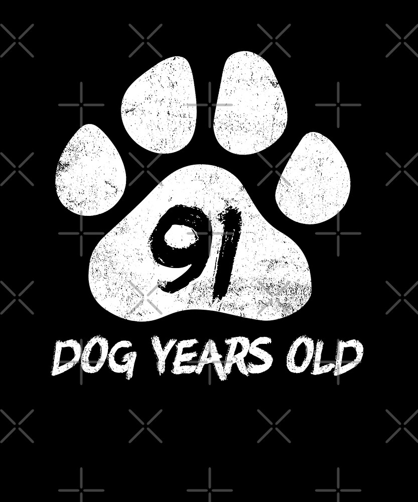91 Dog Years Old Funny 13th Birthday Teenager Gift by SpecialtyGifts