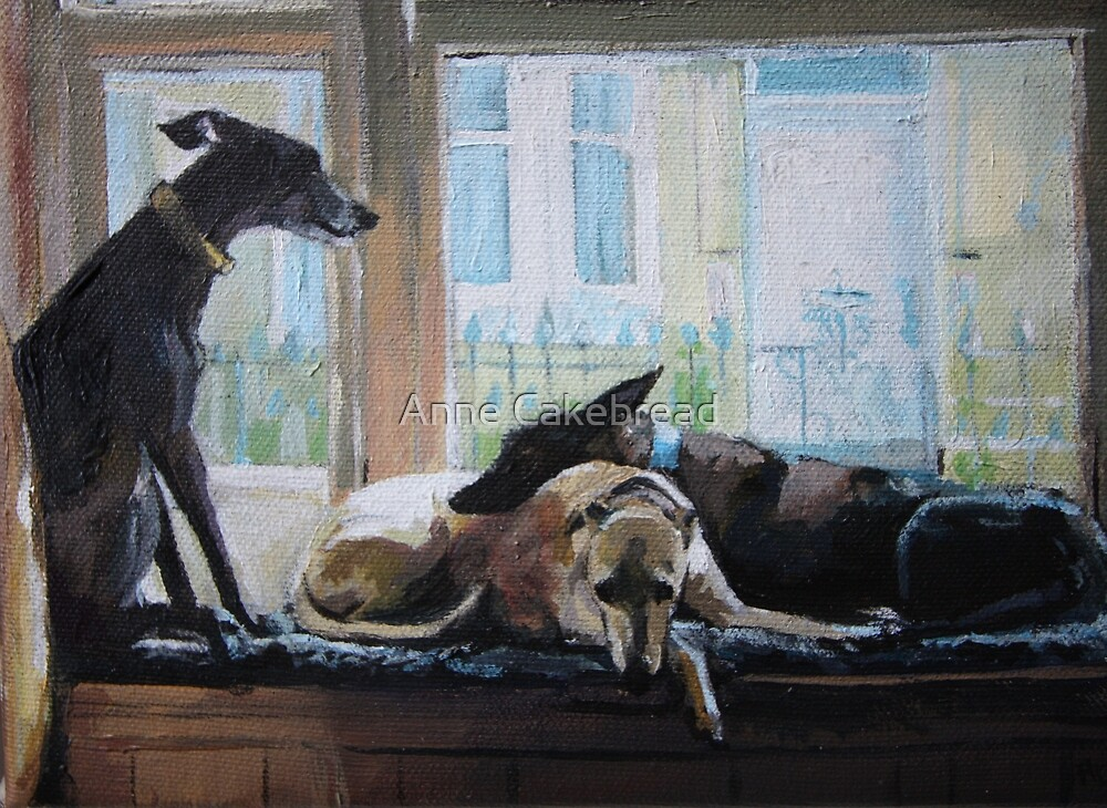 Whippets in the window by YSied