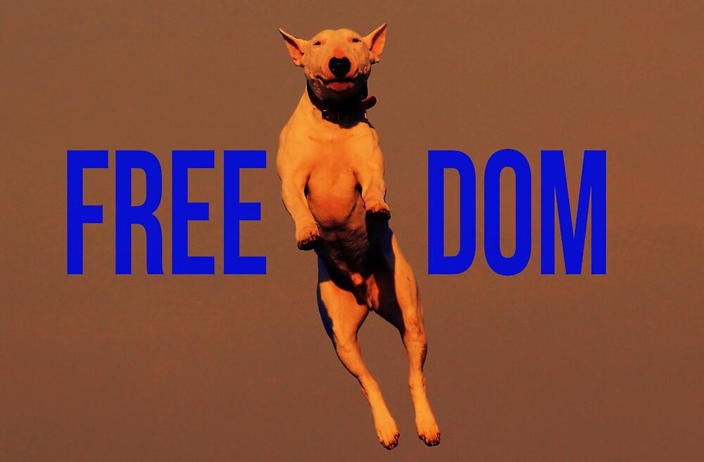 dog- freedom by ogassawara