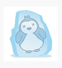Cute Penguin Frozen in an Ice Block Photographic Print