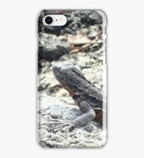 Lizards in the Distance iPhone Case/Skin
