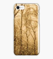 Whispering Snowstorm iPhone Case/Skin