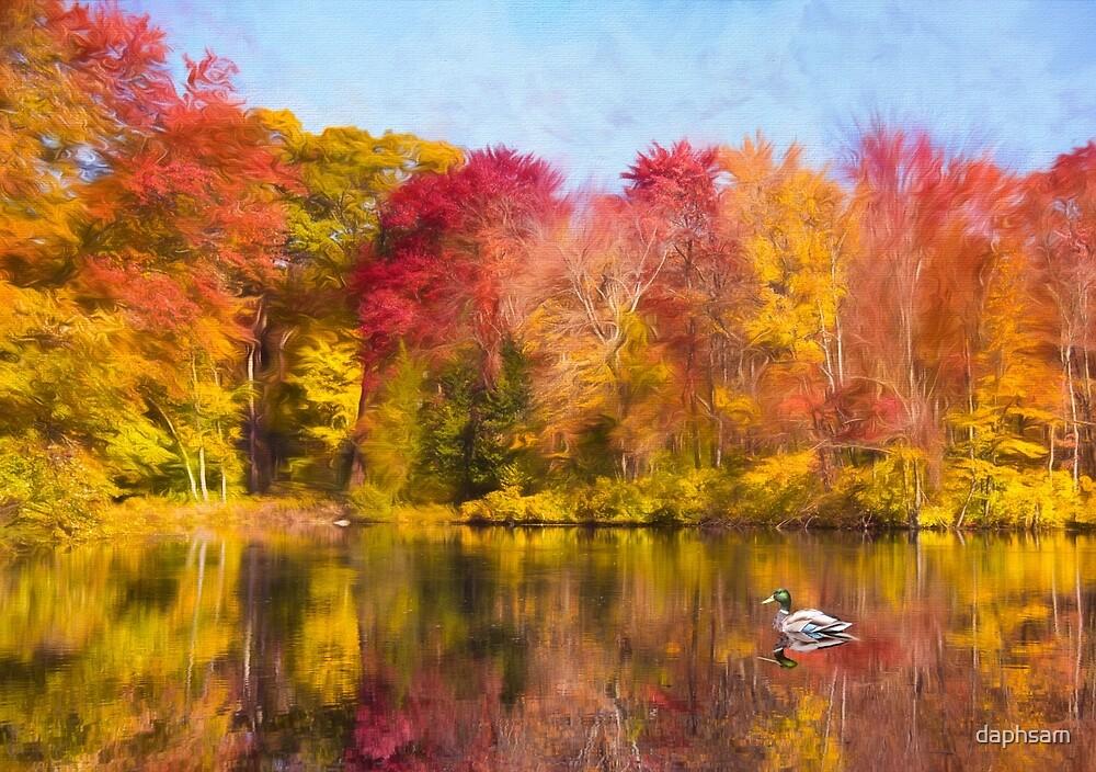 Autumn Pond With Mallard Duck by daphsam