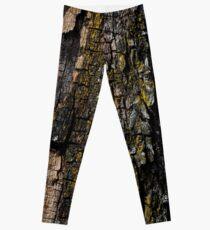 Mossy wood bark pattern Leggings