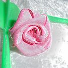 pinke Rose von sanabi89