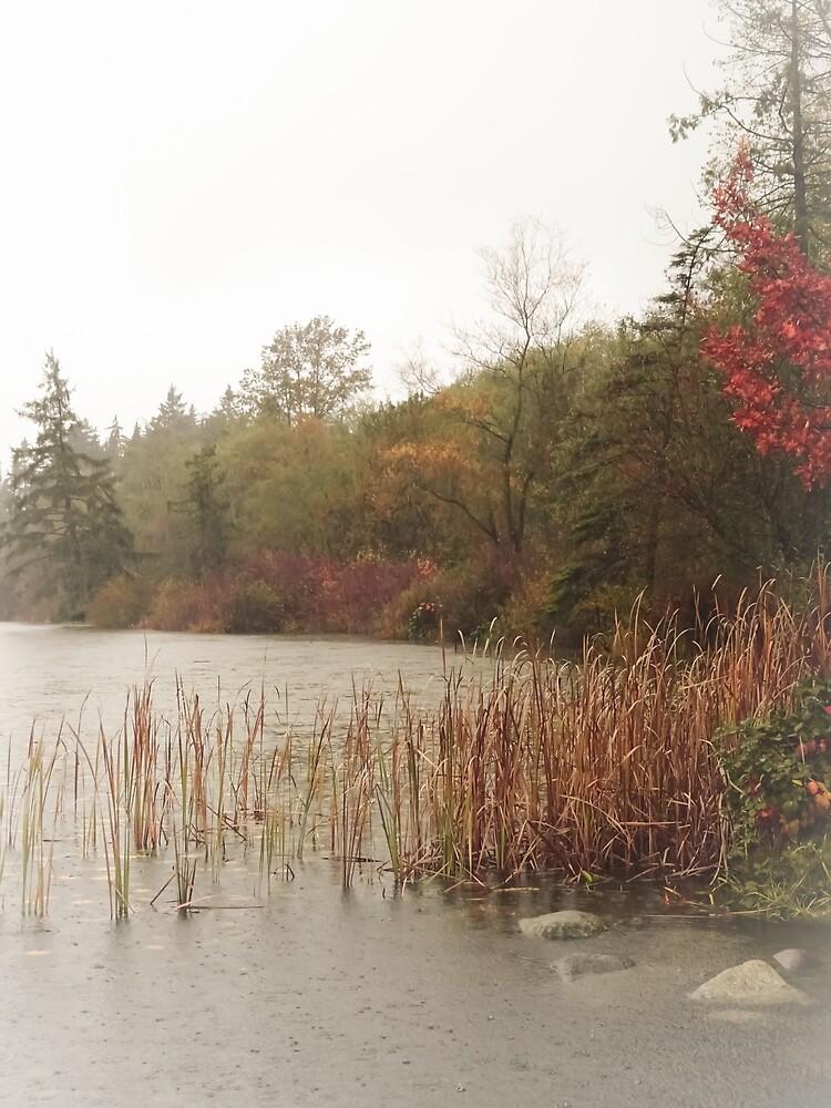 West Coast: Deer Lake Decrescendo by Chancelrie