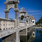 The Forgotten Palace by Maximilian John