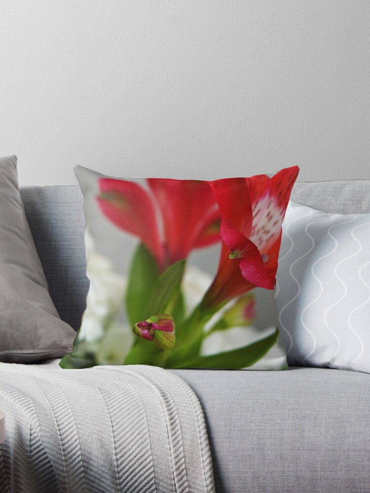 Red freesia by adriana-holmes