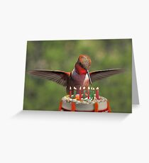 Birthday Bird Greeting Card