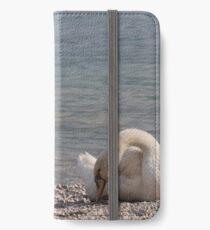 swan at lake iPhone Wallet/Case/Skin