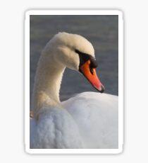 swan at lake Sticker