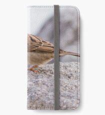 bird at lake iPhone Wallet/Case/Skin