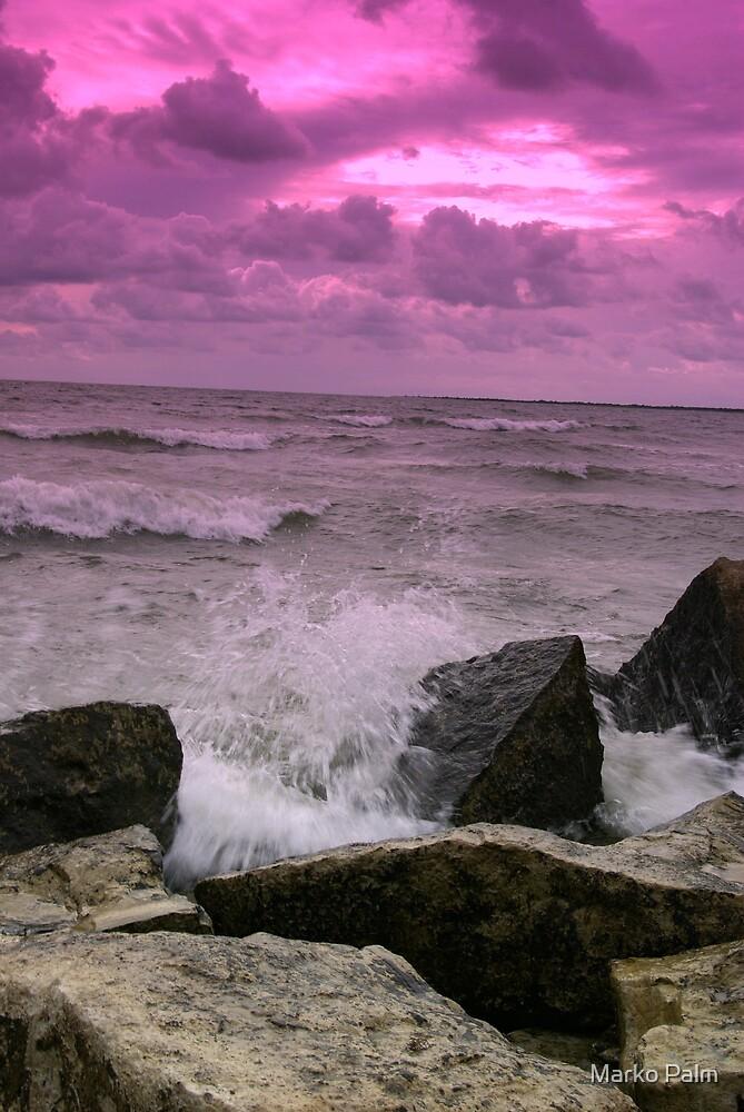 Violet Storm by Marko Palm